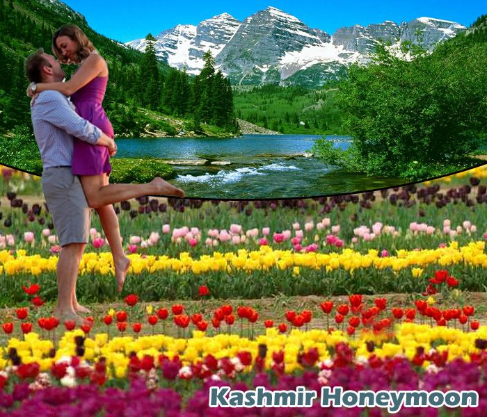 Kashmir is the tourist destination, which is called the heaven on Earth for being enriched with snow-packed mountains, valleys, greenery, waterfalls, roaring rivers and the most romantic environs. Here couples come to celebrate their memorable honeymoon. Tourists can book Kashmir Honeymoon Packages at reasonable prices.  Read more :-  http://goo.gl/AKfKs2