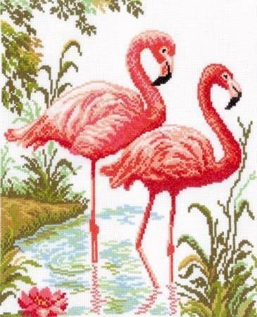 Flamingo 5
