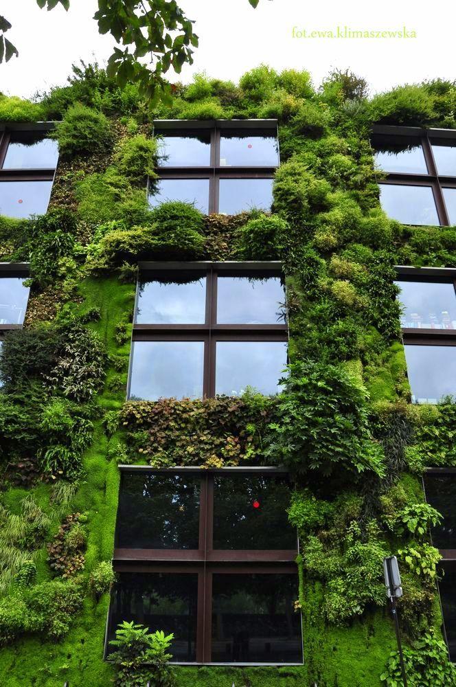 Naprzeciw SZCZĘŚCIU: Paryskie ciekawostki - nie tylko wertykalny ogród Patricka Blanc
