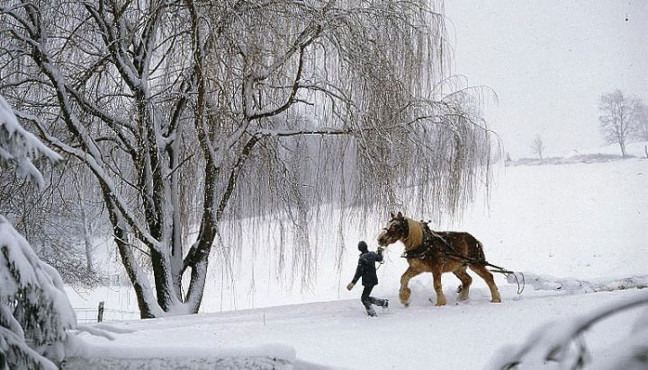 Winter in Amish Country
