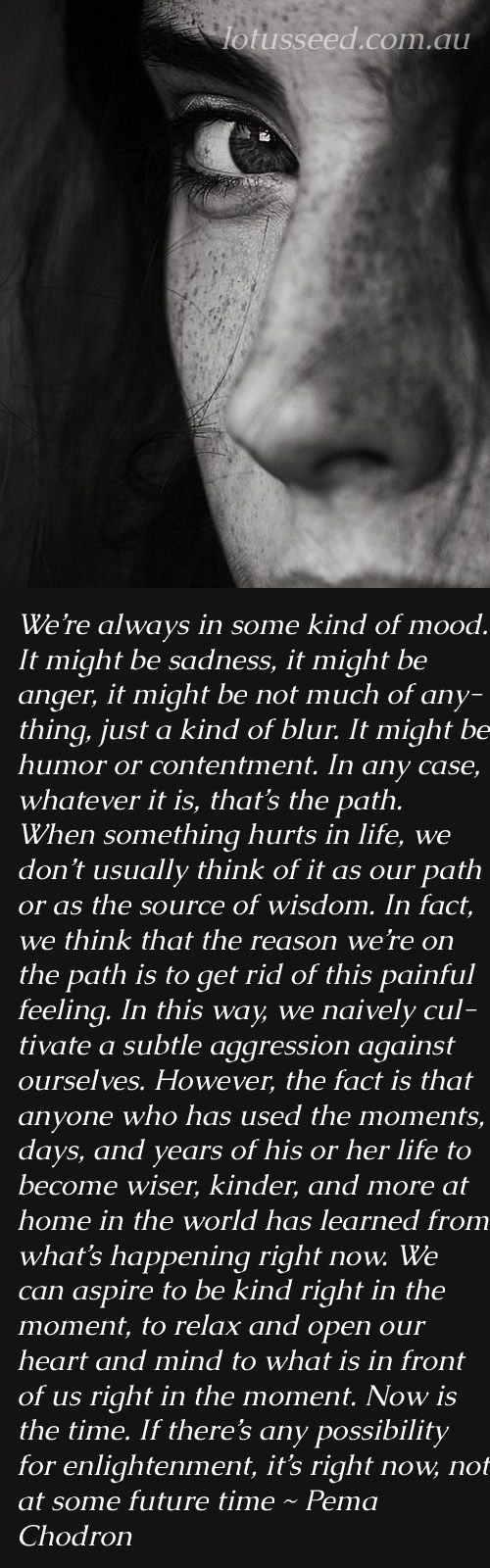 Pema Chodron Buddhism Zen quotes by lotusseed.com.au