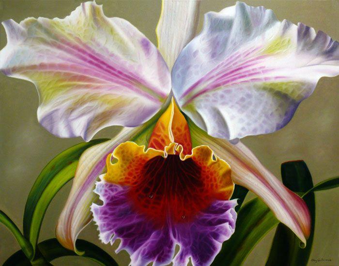 cattleya orchid: Gutierrez Elleri, Floral Beautiful, Cattleya Orchids, Elleri Gutierrez, Flowers Power, Flora, Iris, Rosa-Shocked Flora, Painting