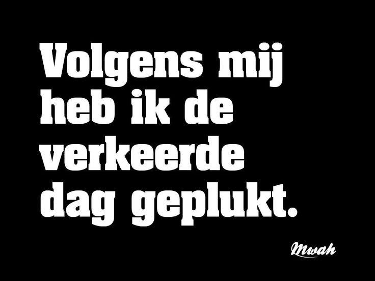 ❥ #nederlandse #spreuken #quotes