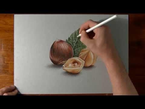 How I draw hazelnuts - realistic drawing