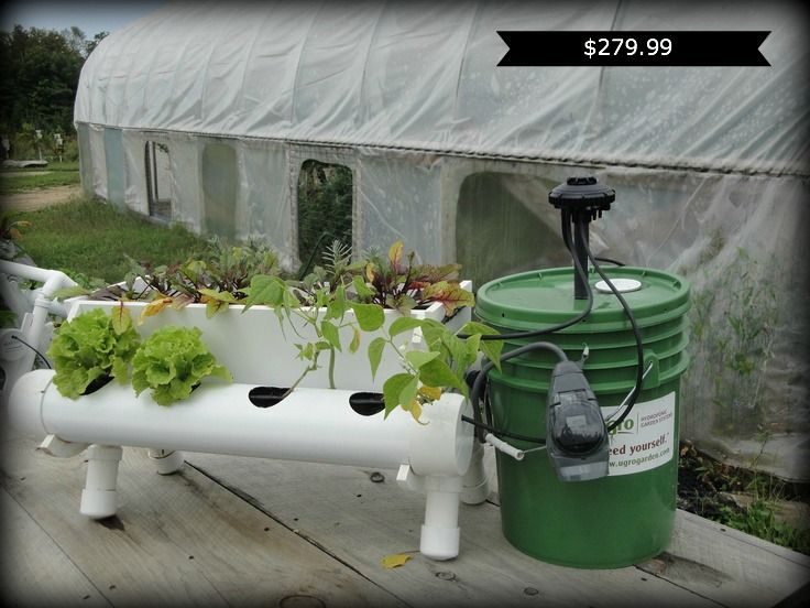 14 best aquaponics and hydroponics images on pinterest for Indoor gardening lesson