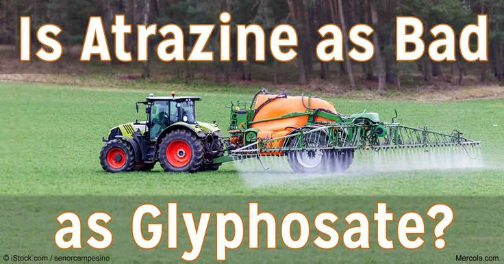"""atrazine essay Atrazine is a weedkiller that is quickly  exposing the toxicity of the common weedkiller, atrazine  local town government hosts """"white privilege"""" essay."""