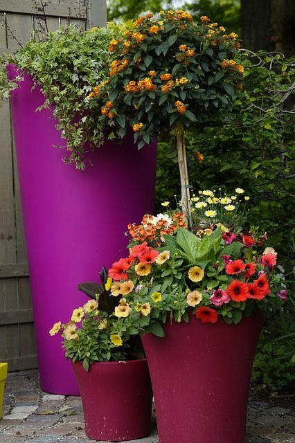 Love the purple planters.