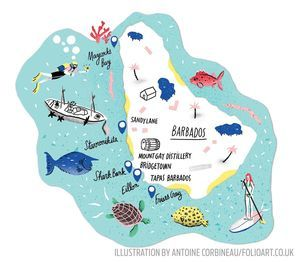 10 Reasons to Go Scuba Diving in Barbados