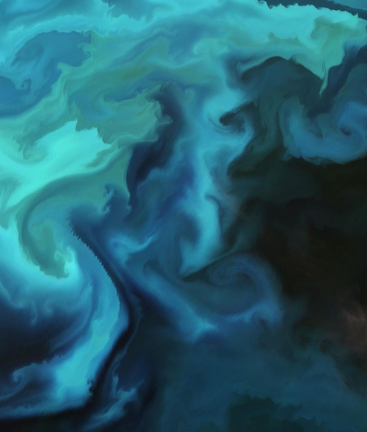 Image: Plankton bloom in the Barents Sea captured by the Sentinel-2A satellite