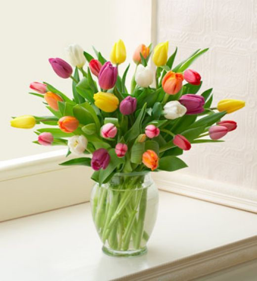 25 Best Ideas About Tulips In Vase On Pinterest Growing