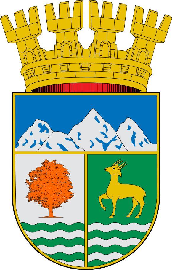 Coyhaique, Capital de la Region No. 11: Aysén, Chile #Coyhaique #Aysén (L2332)