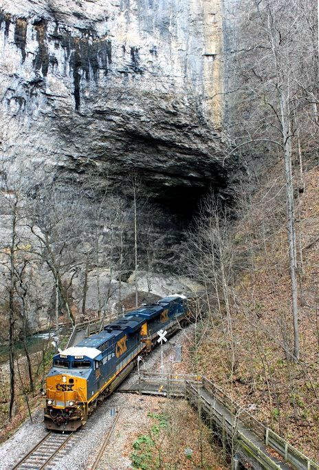 CSX Train at the Natural Tunnel in Duffield Va, State Park