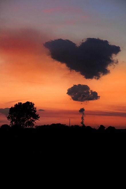 ...Love clouds in the evening skyline...