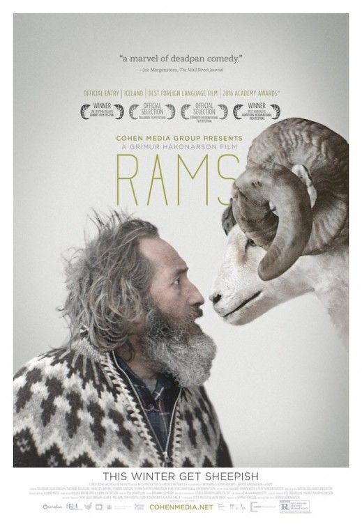 Hrútar (Rams). 2015. Dir. Grímur Hákonarson  A hard-drinking Icelandic farmer (Theodór Júlíusson) and his estranged brother (Sigurður Sigurjónsson) band together to save their flocks of sheep from authorities who want the animals destroyed. Submitted for Academy Award as Best Foreign Film but not nominated.