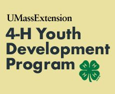 Community Service Ideas - University of Mass Extension