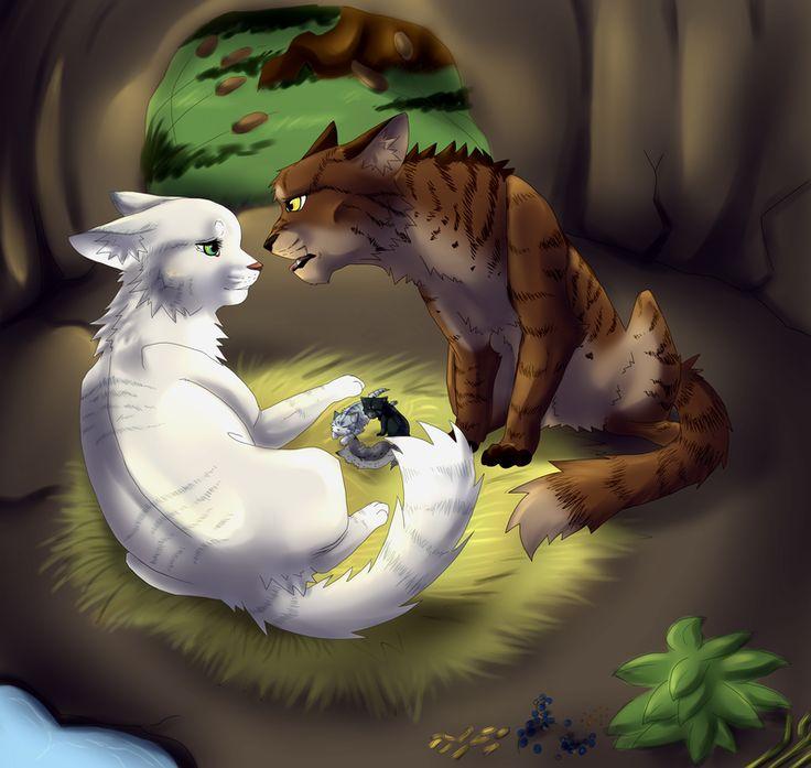 картинки котов воителей белолапка животные- забавные картинки