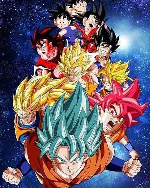 Goku all forms ignore tags dbz dbs dragonballz dragonballsuper anime - Vegeta all forms ...