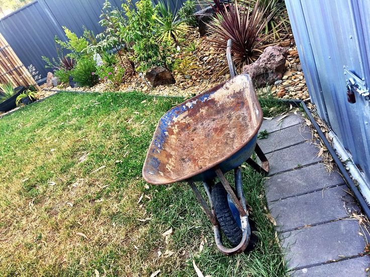 Just scored this bad boy from the neighbours nature strip! Time to stick it in the garden 😂 #scab #wheelbarrow #garden #flattyre @nnicole_