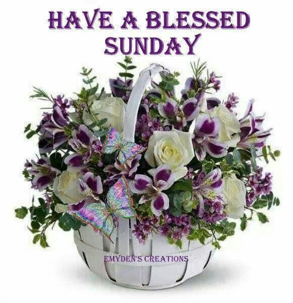 Blessed Sunday Quotes   Blessed Sunday