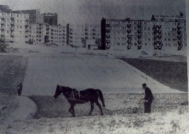 1974 r. Os. im. H. Sienkiewicza, widok z wąwozu Rury w stronę północną źródło; Mateusz R.