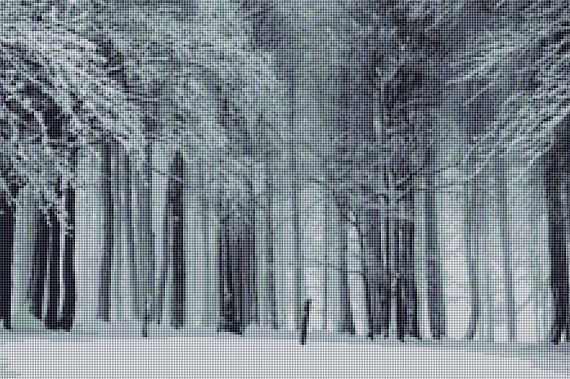 Forest in Winter Country Landscape Counted Cross Stitch Pattern / Chart, Instant Digital Download   (AP360)