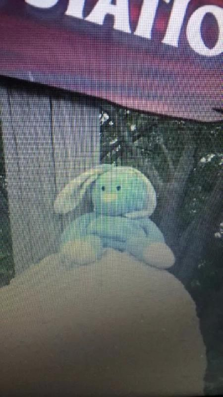 Lost on 14/08/2014 @ olu deniz. Blue bunny rabbit with a white belly a blue/white check neckerchief lost whilst on holiday to Turkey in Olu Deniz Visit: https://whiteboomerang.com/lostteddy/msg/vlj84t (Posted by sylvia on 04/10/2014)