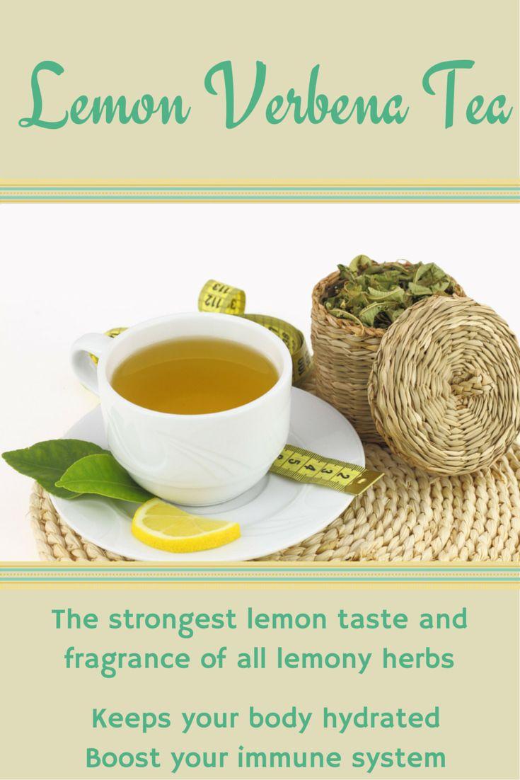 Lemon Verbena. The strongest lemon taste and fragrance of all the lemony herbs. Instead of starting the day with hot water and lemon, try lemon verbena tea.