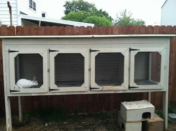 Diy rabbit hutch instructions woodworking projects plans for Diy rabbit hutch designs