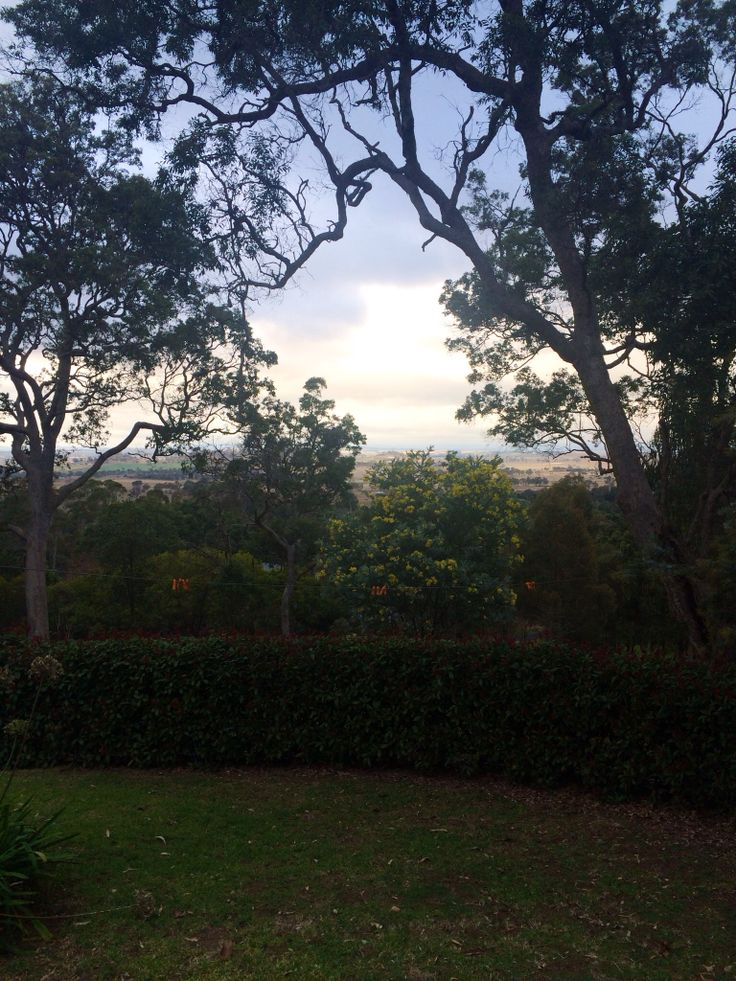 View from weejarra