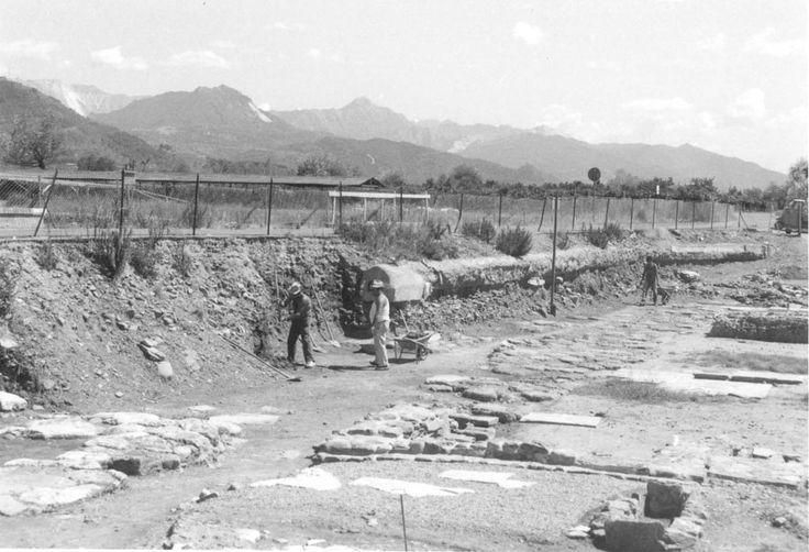 Luni, gli scavi del decumano massimo #50Luni