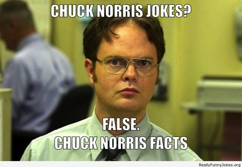 Top Funniest Jokes about Chuck Norris                                                                                                                                                                                 More