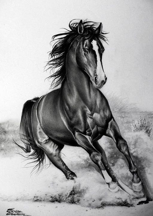 Running horse | Horses, Horse painting, Horse drawings