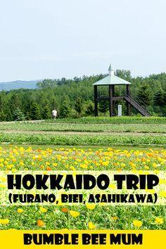 Our Hokkaido Trip in June 2016 (Part 1) - Furano, Biei, Asahikawa - Bumble Bee Mum