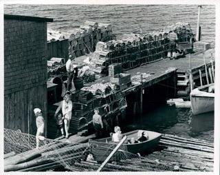 Lobster Cages, Fishing Dock in Cape Breton, Nova Scotia | Photographs And Memories, Cape Breton, Nova Scotia