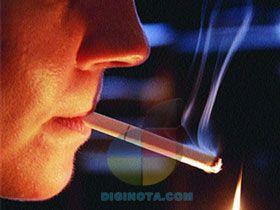 Fumar puede acortar tu pene casi un centímetro y mas datos que impactarán a muchos hombres