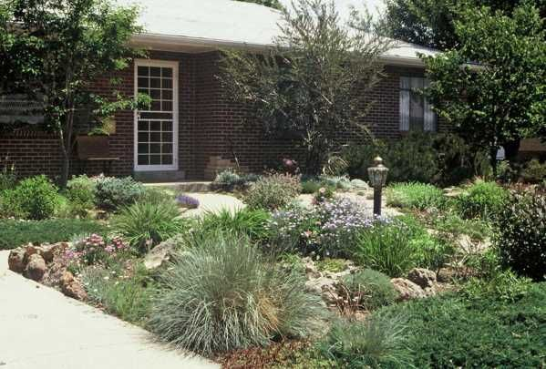 Best 25 no grass yard ideas on pinterest dog friendly for Landscaping front yard without grass