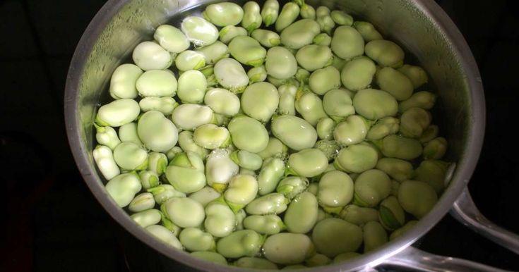 """Fèves à l'anglaise. Eplucher des fèves fraîches et <a href=""""/lexique/anglaise.html"""">cuire à l'anglaise</a>.. La recette par Chef Simon."""