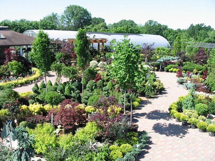 Best Of Hall Garden Center