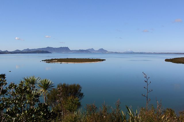Whangarei Harbour from Limestone Island