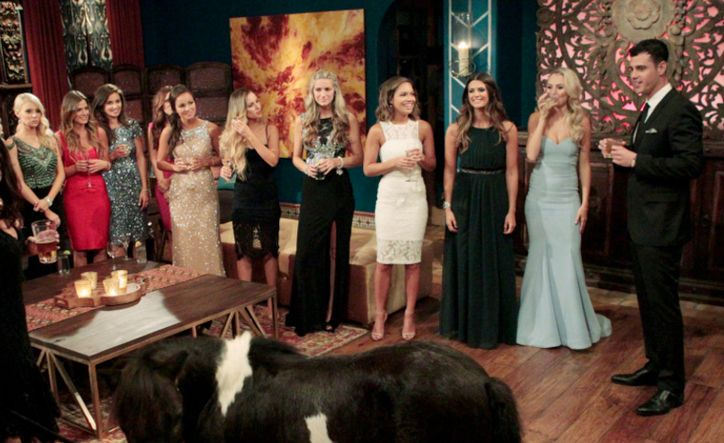 Crazy Fashion Secrets You Never Knew About The Bachelor and The Bachelorette #news #fashion
