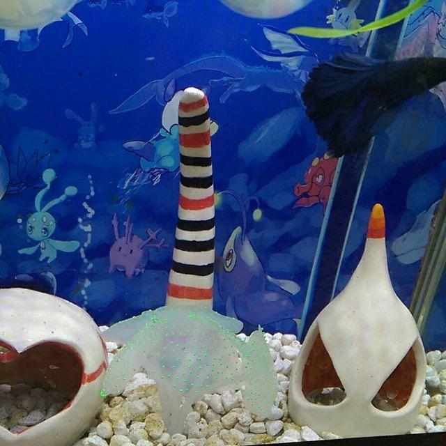 Kelly H added a photo of their betta tank! whitecitrus.etsy.com #bettafish #bettatank #nanotank #desktop