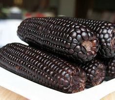 Aztec Black Corn ancient heirloom 50 seeds non GMO early