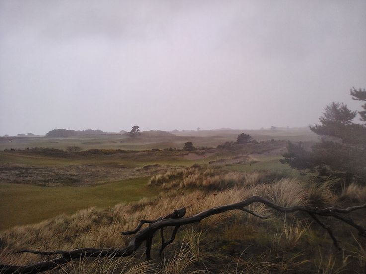 Stayin' Up With The Stanwees: Quick Weekend Getaways: Coos Bay & Bandon