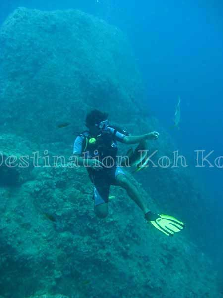 Diving with Paradise Divers @ Koh Kood (Thailand)