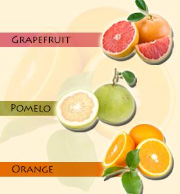 names of fruits list of citrus fruits
