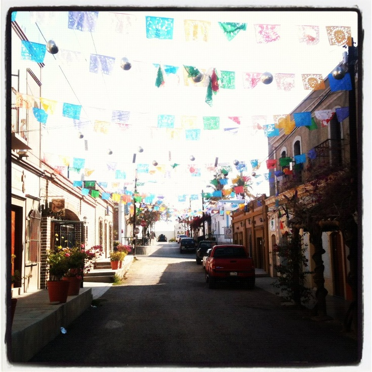 inspirational pic of todos santos- the town was alive with many tourists. It was a great place to getaway from the hotel.