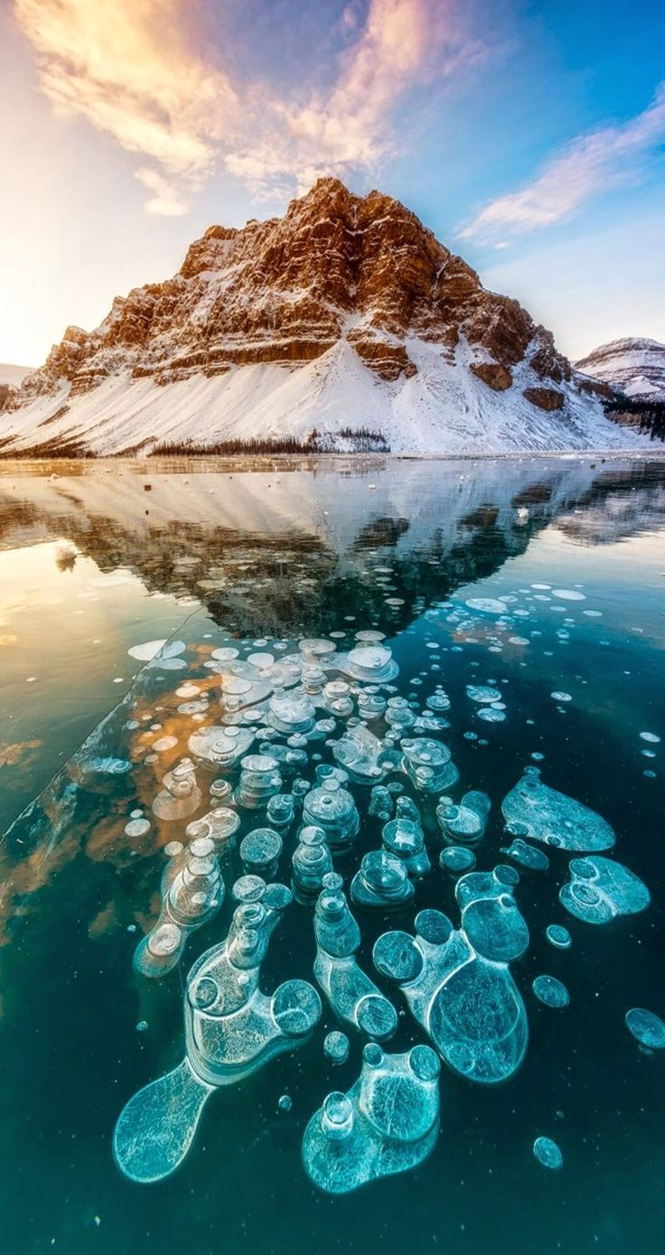 Bow Lake. 9 Amazing and beautiful Snowy and Ice Lake ...