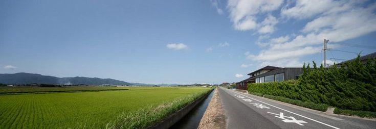 Straße grüne Felder Sichtschutzhecke #architektur