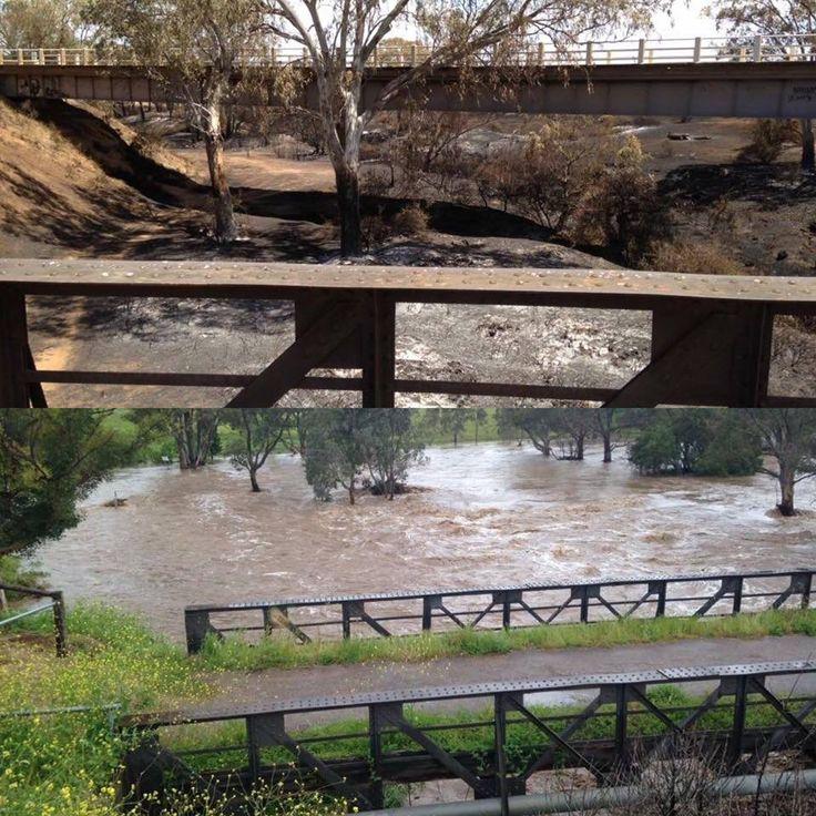 Before and after at Hamley Bridge