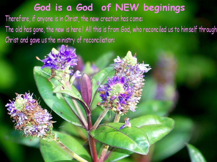 christian txt ...  I am like a different person since knowing Jesus and the Holy Spirit.... I am still me .... but I have ... some new charecteristics and skills that I didn't have  before...and / or.... I didn't know how to use them... and am  still growing, changing and developing today and everyday with the help of the Holy Spirit... and you can too,.... make the decision today, and call on jesus,  and He will come and work with you ..... to make you a new creature ....